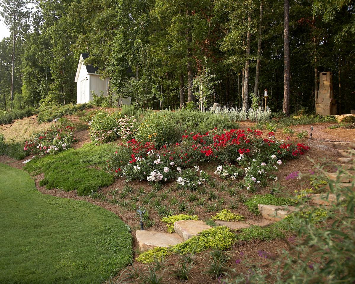 Suburban Woodland Garden | Classic Landscapes