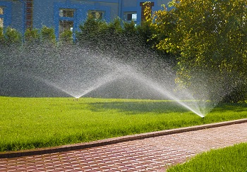 Commercial Landscape Irrigation