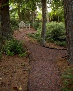 Davis path
